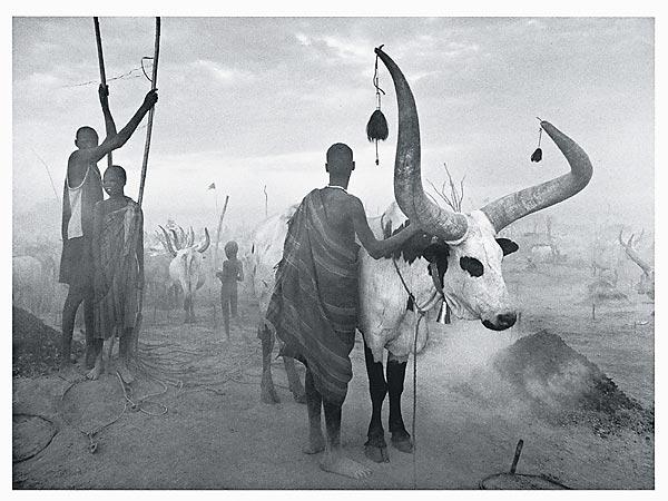 Dinka-Gruppe im Viehlager von Pagarau. Südsudan, 2006.