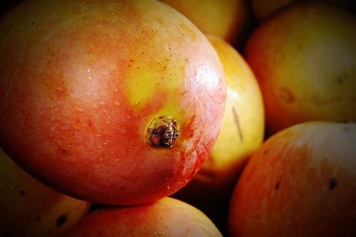 Verdächtige Löcher in der Mango? - Ohne Schädlinge ist alles okay.