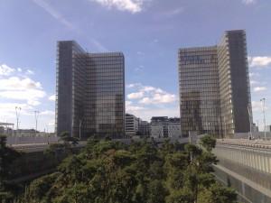 Bäume_Paris_Zender